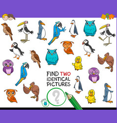Find two identical bird pictures game for kids vector
