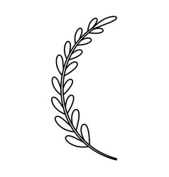 Laurel wreath leaves bouquet vector
