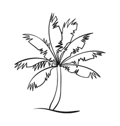Palm tree icon in outline style isolated on white vector