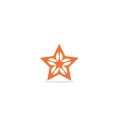 Star ornament logo vector