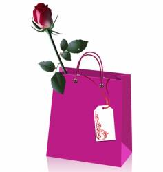 rose in paper bag vector image vector image