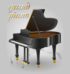 grand piano musical instruments stock vector image