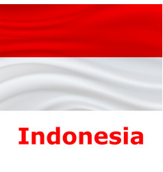 17 august indonesia independence day background vector