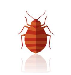 flat geometric bedbug vector image