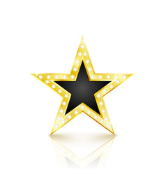 Golden star with diamonds on white background vector