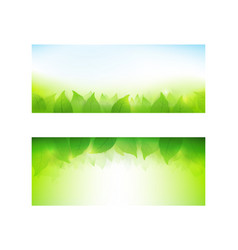 Set of banner gradient green background element vector