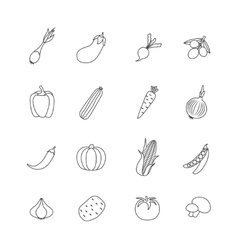 Vegetables Lined Isolated Icon Flat Set vector image