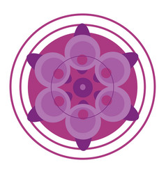 a pink color mandala or color vector image