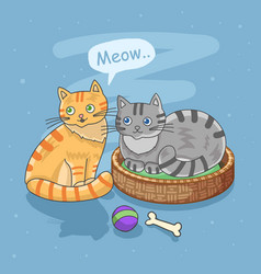 cute cats meow together vector image