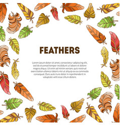 Feathers banner with ethnic colorful ornament vector