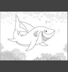 grey reef shark over a reef vector image