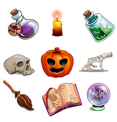 Halloween symbols - skull book pumpkin and other vector