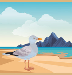 Seagull at beach vector
