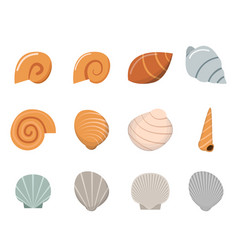 set of shell in flat style top view vector image