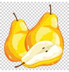 Pear Isolated vector image vector image