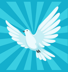 background with white dove beautiful pigeon faith vector image