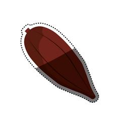Cocoa chocolate bean vector
