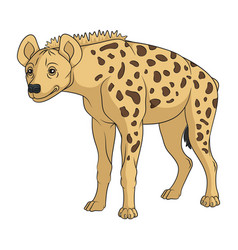 color with african spotted hyena vector image