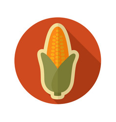 corn flat icon vegetable vector image