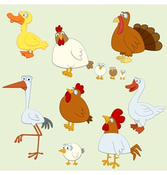 Farm birds vector image