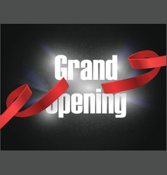 Grand opening background with lettering sign vector