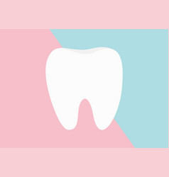 healthy tooth icon flat design oral dental vector image