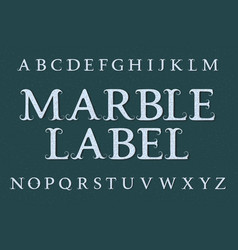 marble label typeface isolated english alphabet vector image