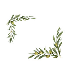 watercolor wreath olive branches vector image