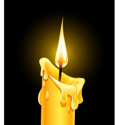 fire of burning wax candle vector image vector image