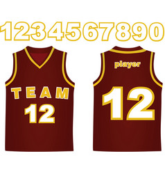 Basketball jersey vector
