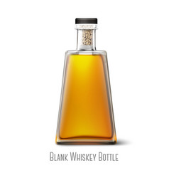 Blank triangle whiskey bottle isolated on white vector