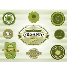 Set of organic food labels vector