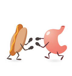 Stomach and hot dog fighting vector