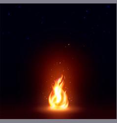 isolated abstract realistic fire flame image vector image vector image