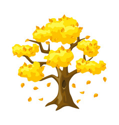 autumn tree with falling yellow leaves seasonal vector image