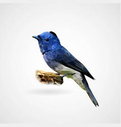 colorful polygonal bird vector image