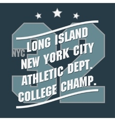 New York Sport t-shirt graphics vector image