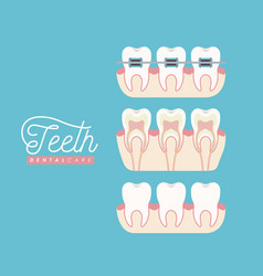 Teeth dental care set on color poster vector