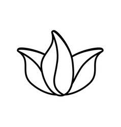 flower decoration nature icon outline vector image vector image