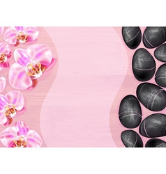 Spa Background with Orchids and Stones vector image vector image