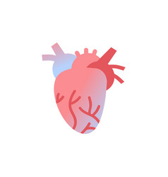 Anatomical heart icon human body organ anatomy vector