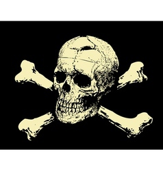 Evil skull with bones Warning sign vector image