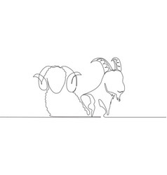 One single line drawing goat and sheep head vector