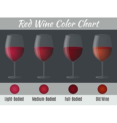 Red wine color chart vector image