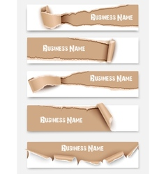 set torn paper banners vector image
