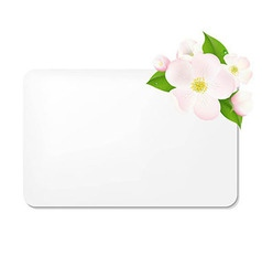 Apple Tree Flowers With Blank Gift Tags vector image