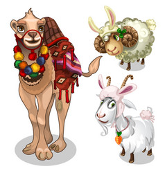 Camel sheep and goat in childrens style costume vector