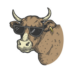 cow animal in sunglasses color engraving vector image