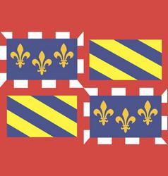Flag french region burgundy vector