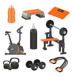 Flat set different sport items and vector